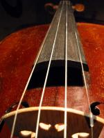 violon28_05_06_012_500.jpg